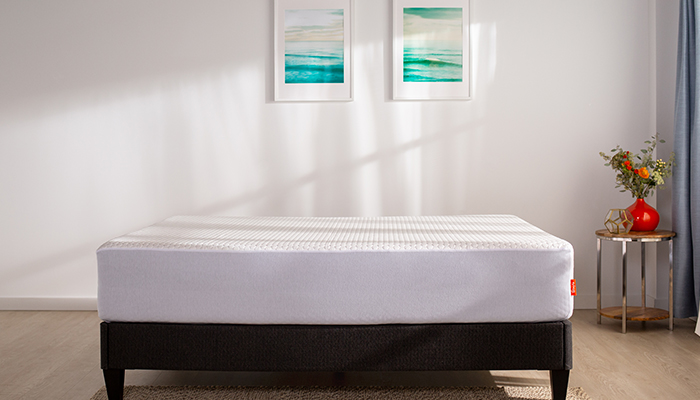 Layla® Essential Mattress Protector - King Size - Liquid Proof, Stain Resistance - Hypollergenic & Dustmite Barrier - $74.00