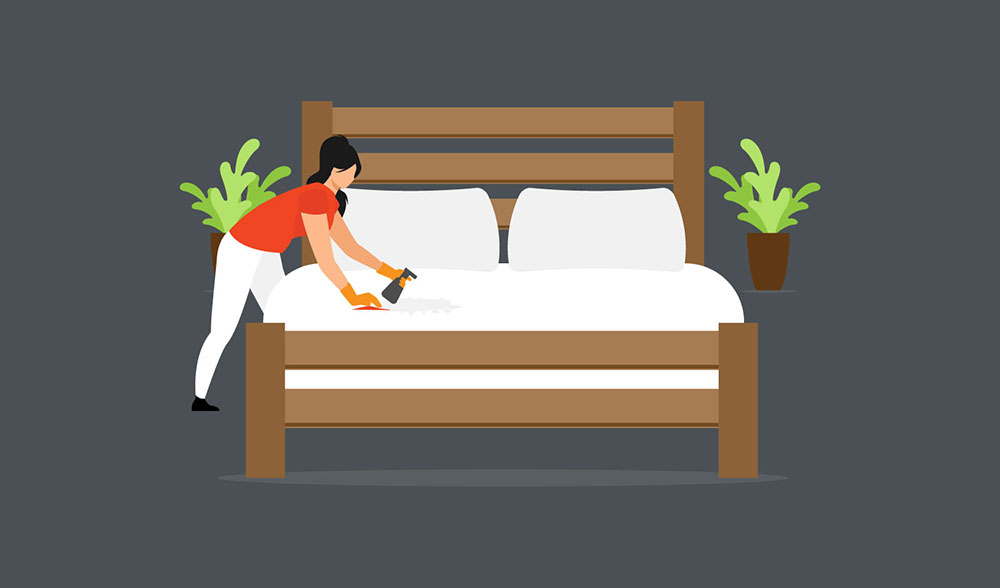 tips-to-clean-mattress