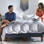 Down Vs Down Alternative Comforter