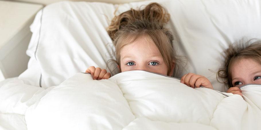 Quilt Vs Comforter